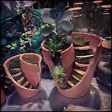 Novi život razbijenih posuda za cvijeće
