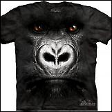 Kul majice