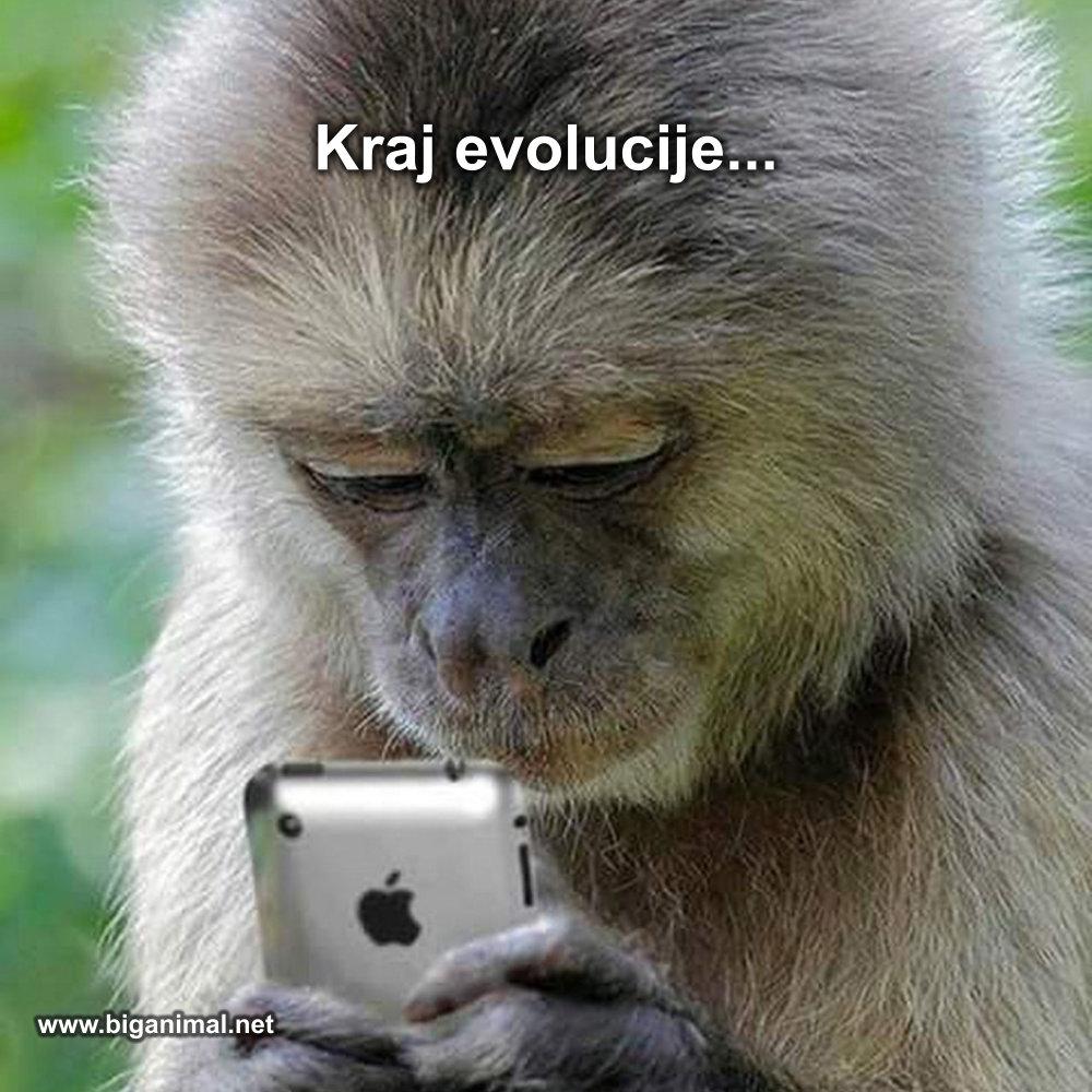 Kraj evolucije