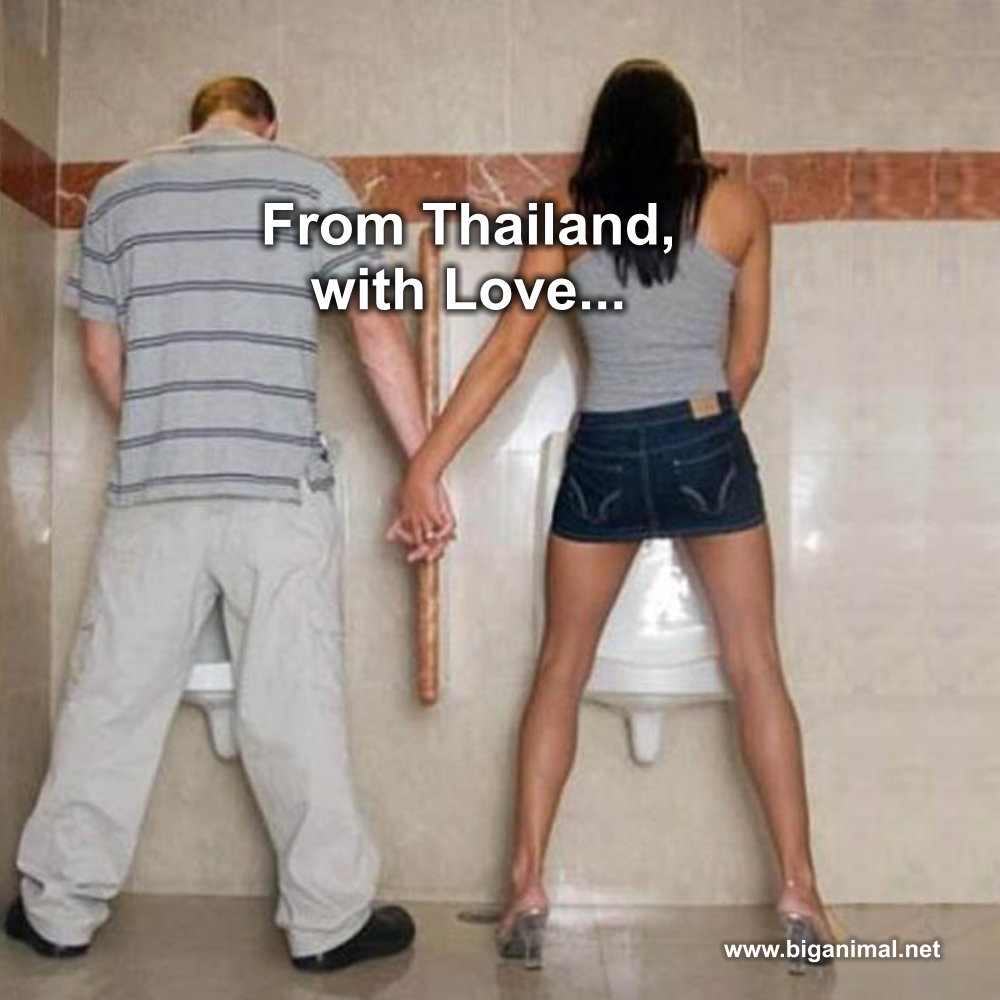 From Thailand, with love,,,