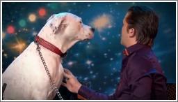Pas pjeva uz pjesmu Whitney Houston